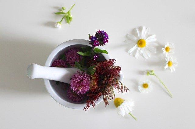 medicinal-flower-4246073_640